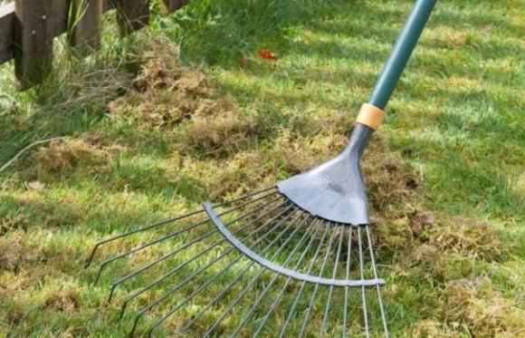 Прочесывание рулонного газона