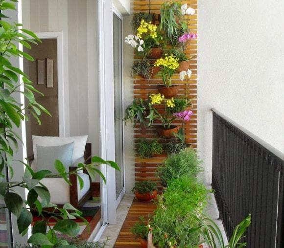 Идеи расположения растений на балконе
