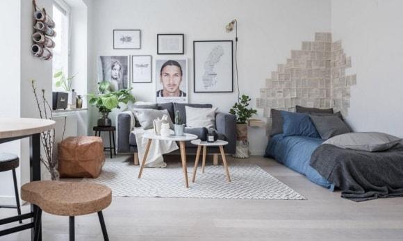 Спальня-гостиная скандинавского стиля с диваном и кроватью