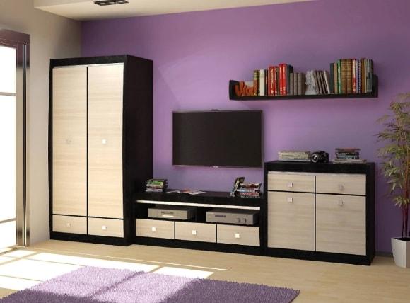 Современная стенка в гостиной комнате со шкафом для одежды